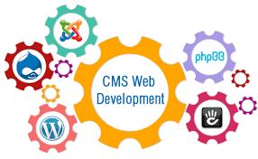 web and cms development